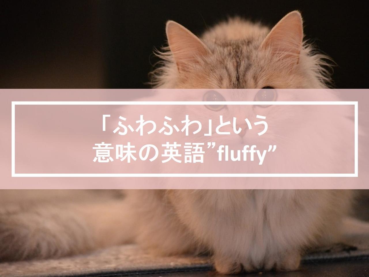 """「ふわふわ」という意味の英語""""fluffy""""の使い方・例文"""