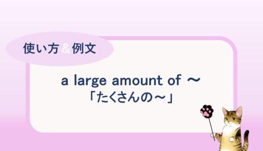 a large amount of ~ などの「たくさんの ~」の使い方と例文